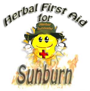 Herbs for Sunburn