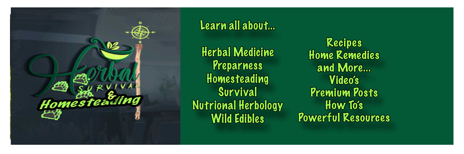 A few things you can learn at Herbal Survival Blog